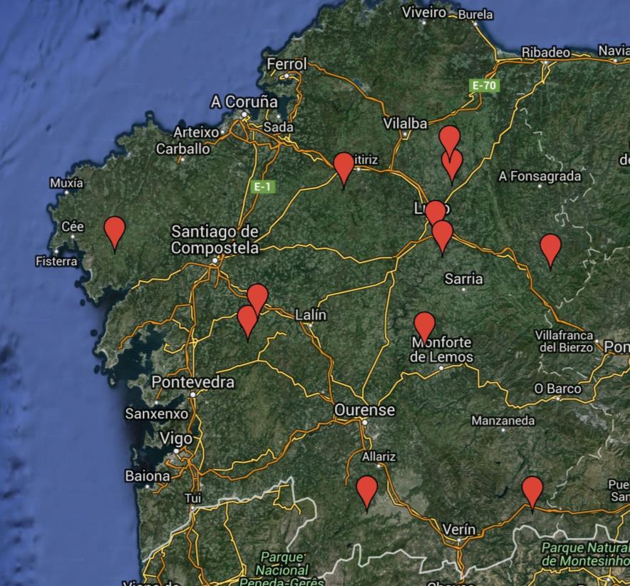 Colonias de aguilucho cenizo en Galicia. Xabier Vázquez Pumariño
